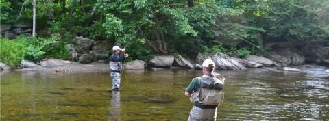 Vermont Fish on